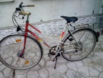 Biciclete mari de dama si barbati