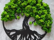 Copacul vietii licheni dimensiune 30-90 cm