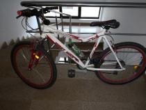 Bicicleta FirstBike - echipare Shimano Xtreme