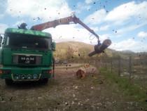 Macara forestiera, camion lemn lung,transport busteni