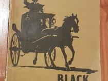 Black Beauty de Anna Sewell. In engleza