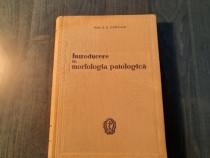 Introducere in morfologia patologica E. Craciun