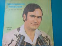 Vinil Gheorghe Rosoga