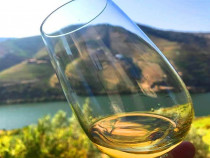 Vin din Vita Nobila - Sauvignon Blanc