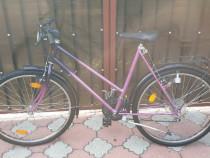 Bicicleta dama Grand Cannyon 26 zoll