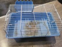 Cusca rozatoare porcusor guinea iepure hamster 60x30