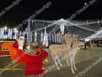 Sanie luminoasa cu reni de exterior iluminat festiv Craciun