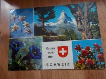 Vedere / carte postala Gruss aus de Schweiz, 1990