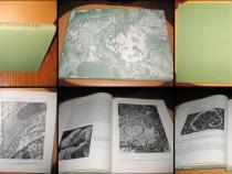 Carte Medicina-Nefropatiile Glomerulare Timisoara 1983.