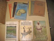 Kosmos 2 Stiinta carti almanah german vechi set 11 buc.