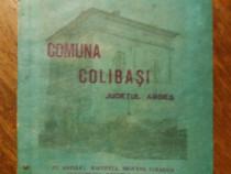Monografia Comunei Colibasi 1973/ R7P2F