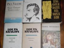 Cărți diverse literatură