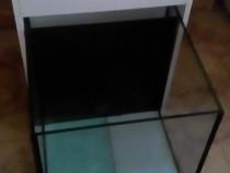 Fish spa garra rufa aquariums