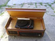 Pick-up cu radio Bucium 3