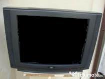 Televizor NEI (defect)