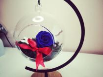Cupole și aranjamente trandafiri criogenati