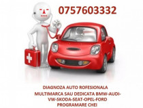 Efectuez tester-diagnoza auto multimarca sau dedicat profi