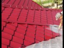 Vopsitor la Tabla Ruginită sau coșcovită pe acoperiș orice