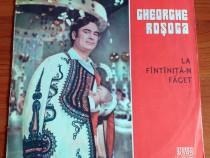 Gheorghe Rosoga - La fantanita-n faget - DISC VINIL