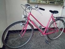 Bicicleta Sursee