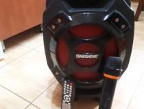 Boxa Portabila TEMEISHENG, Bluetooth, Microfon Karaoke, USB