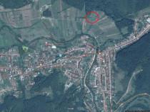 Teren extravilan - agricol in zona Bocsa-Vasiova