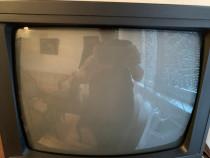 Televizor Freedom diagonala 35 cm