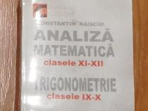 Analiza matematica clasele XI-XII de Constantin Raischi