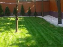 Amenajare spatii verzi insamanta gazon casa grădină Oradea