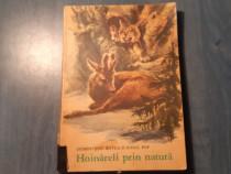 Hoinareli prin natura Demostene Botez I. Pop carte pt. copii