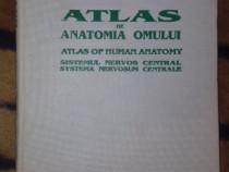 Atlas de anatomia omului sistemul nervos central - Ranga