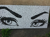 Tablou decorativ mozaic ceramica Privire