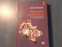 Bucurestiul postindustrial de Liviu Chelcea