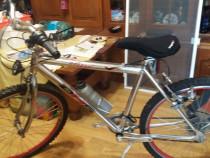 Bicicleta DS5 Sport