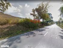 Proprietar, teren Voinesti la asfalt 18000 mp