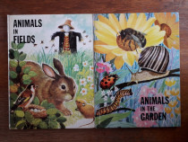 Animals in the garden + Animals in fields / R6P2F