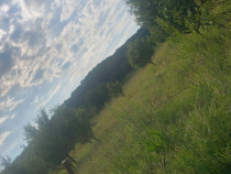 Teren 500mp Valea Jelnei Bistrita