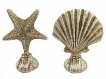 Decoratie Set Formata Din Stea De Mare Si Scoica, TD911D