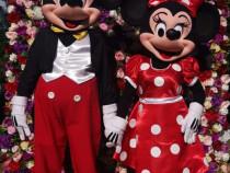 Mickey si Minnie aniversari petreceri