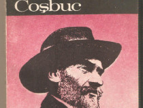 Pe urmele lui George Cosbuc-Lucian Valea