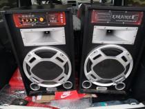 Boxe audio active100wstik,card,Bluetooth,radio,aux,microfon