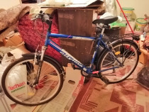 Bicicleta model masculin
