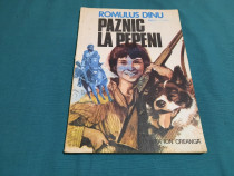 Paznic la pepeni / romulus dinu/ 1982