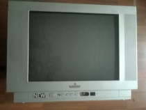 Televizor (marca Watson)