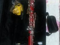 Clarinet profesional parot