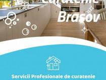 Curatenie la domiciliu Brasov