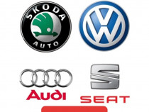 Diagnoze auto gama vag (Volkswagen Audi Skoda Seat)