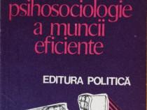 S. Chelcea - Elemente de psihosociologie a muncii eficiente
