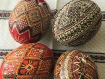 Ouă de struț încondeiate