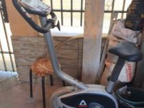 Bicicleta activ medicinala